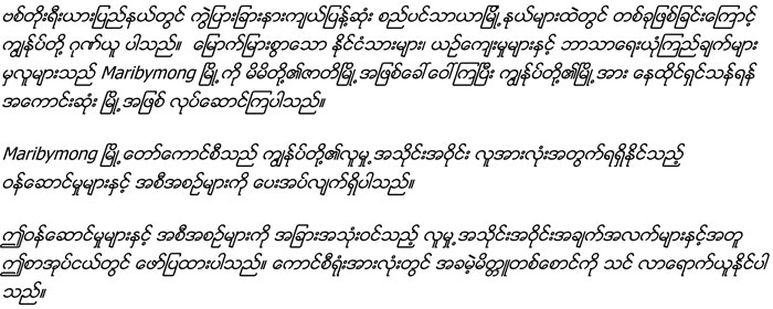Multi-Burmese-Intro.jpg