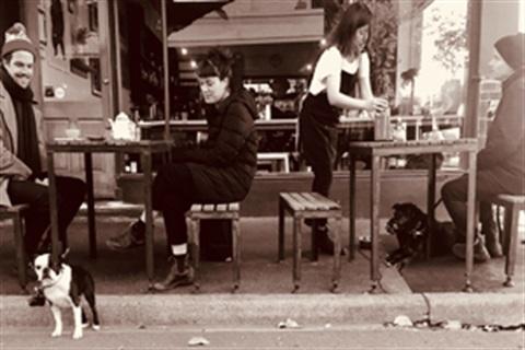 Dog Friendly Cafe Bunbury